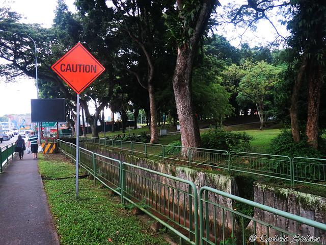 Bukit Timah Ave 02