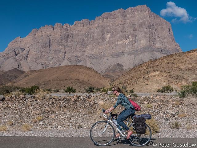 Cycling companion