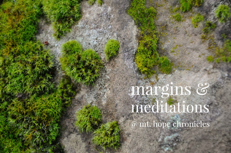On Margins and Meditations @ Mt. Hope Chronicles