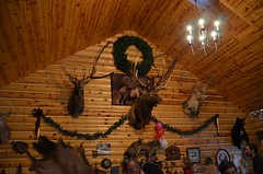 Decorations In the Cabin after the Elk Viewing Sleigh Ride - Thunder Bay Resort, Hillman, MI