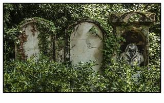 Image of Jim Morrison. viaje verde arquitectura nikon mort cementerio esculturas vert muerte estatuas francia parís lafrance excursión arquitecturapopular paisajesdeciudad nikond90 joselosada cementeriodepèrelachaise cementeriosdeparís