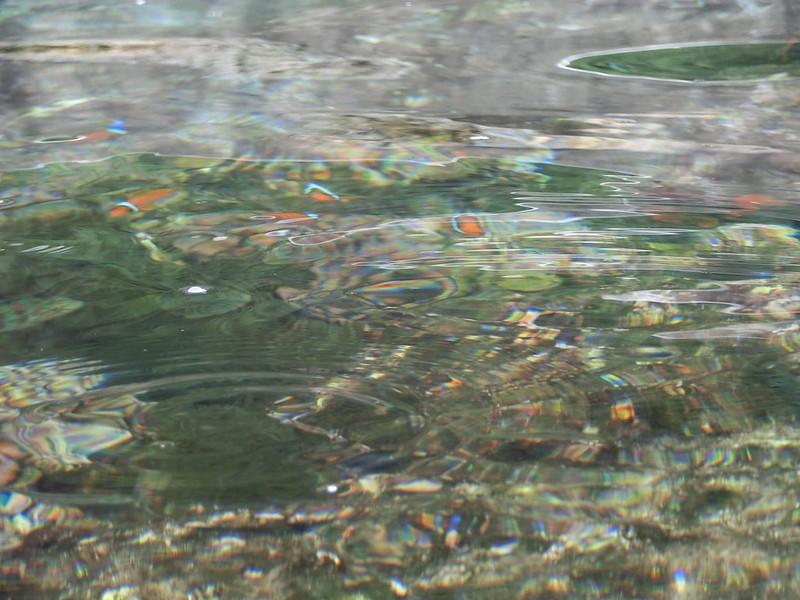 蘭嶼浮潛-環島景點-17度c隨拍 (31)