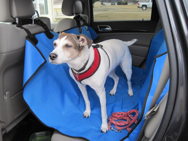 dog seat cover 06