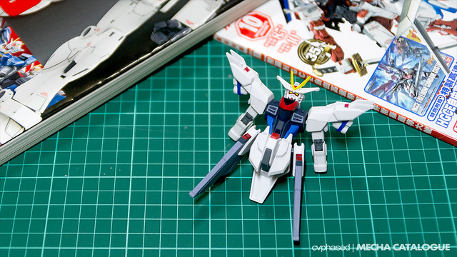 HG Freedom Gundam Flame Feder - Work in Progress #2