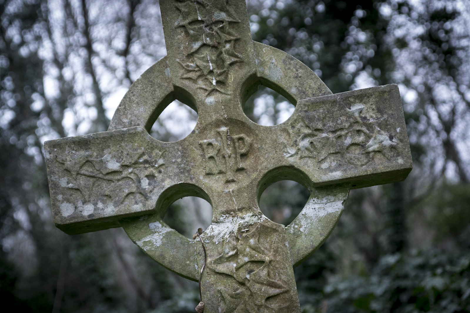 highgate cemetery, old cemetery, highgate, london cemeteries