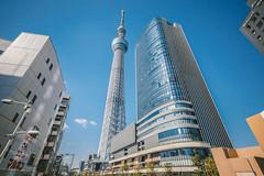 TOKYO SKYTREE_東京スカイツリー_4
