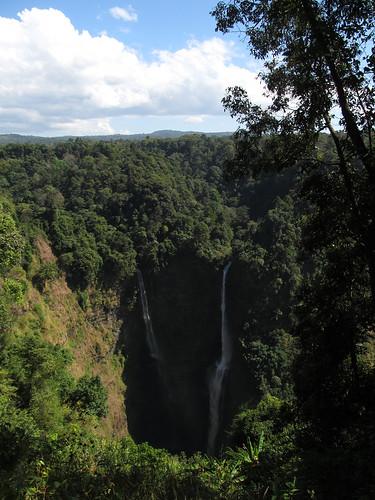 Plateau des Bolovens: les chutes Tad Fan