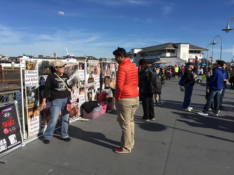 Leafleting and Informational Event on South Korean Dog Meat Trade – February 6, 2016 – San Francisco, Fisherman's Wharf
