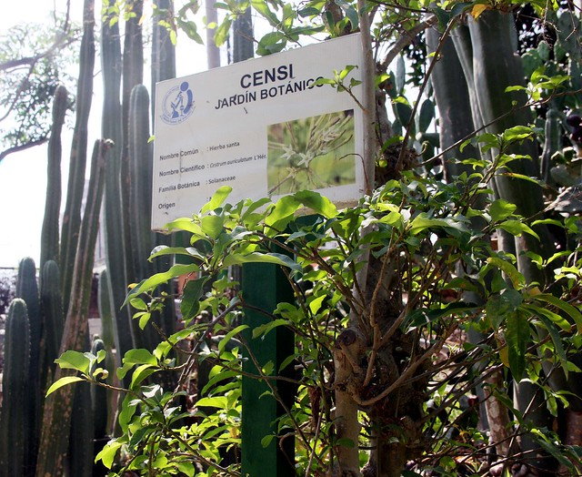 Jardín Botánico del INS