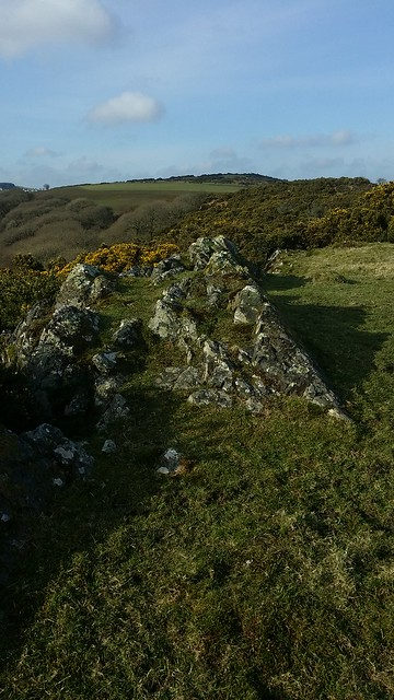 Ashbury Tor summit