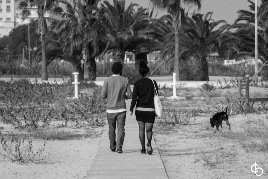 Black and white holidays.