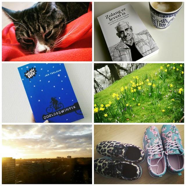Dear diary #4