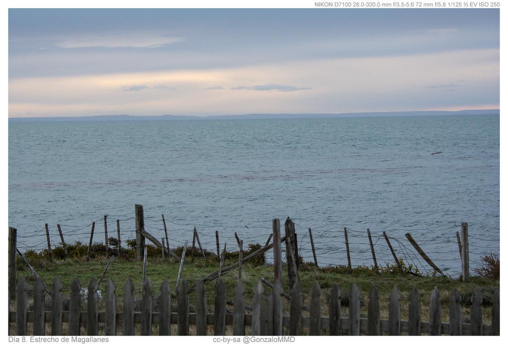 Día 8. Estrecho de Magallanes