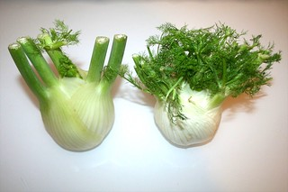 01 - Zutat Fenchel / Ingredient fennel