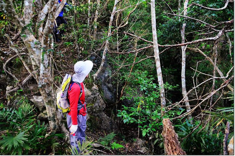 新港南溪山巨岩溝壑區 1