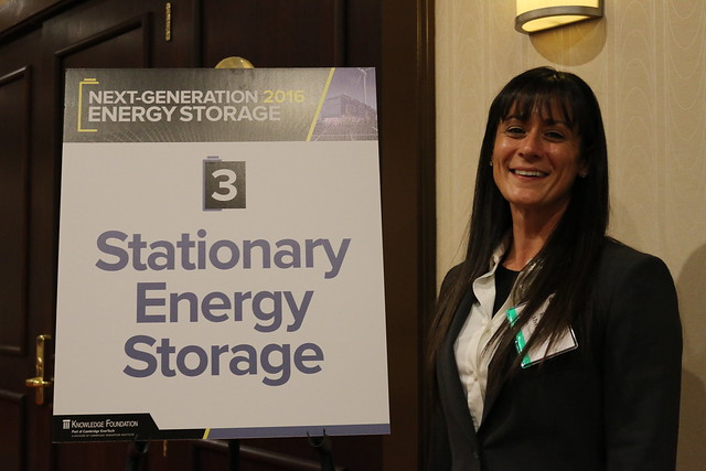 Next-Generation Energy Storage