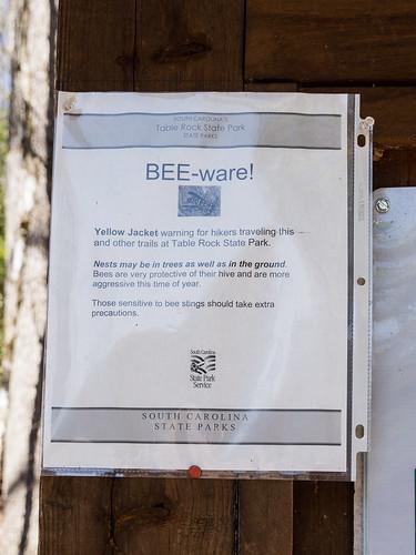 BEE-ware!