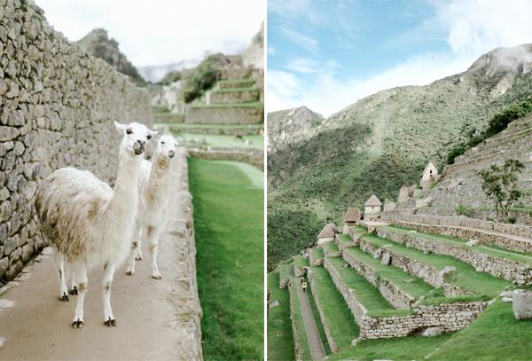 RYALE_Peru-035