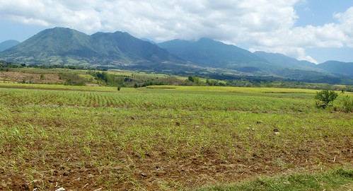 P16-Negros-Bacolod-San Carlos-route (15)