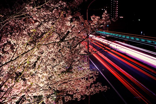 神戸製鋼所の桜 〜 via IG & EyeEm