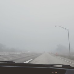 "Florida's version of a ""White Christmas"" #whitechristmas #florida #fog #merrychristmas #tistheseason"