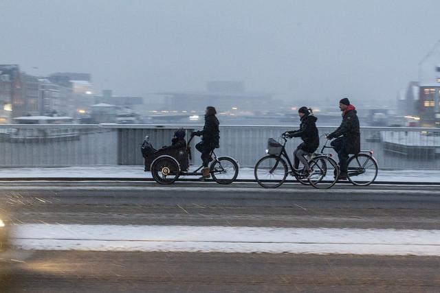 Viking Biking_22