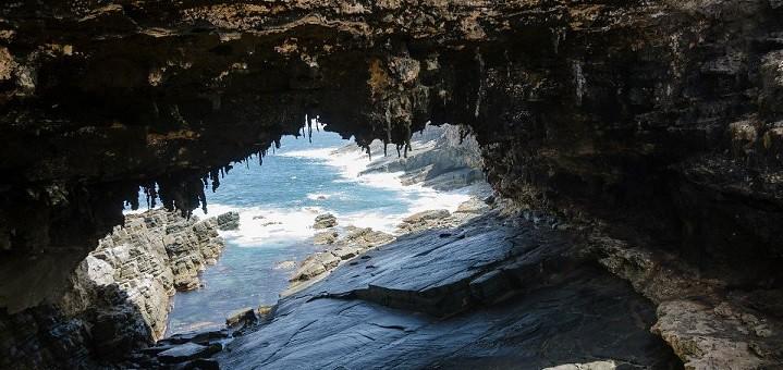 Kangaroo Island - Admiral's Arch - Bill Doyle - crop