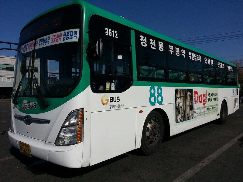 Nami Kim Team's Bus Advertising 2016