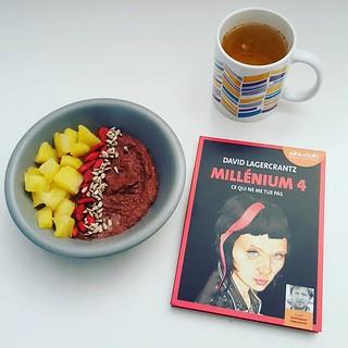 Millenium 4, Ce qui ne me tue pas de David Lagercrantz