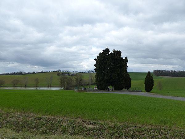 petit cimetière de campagne