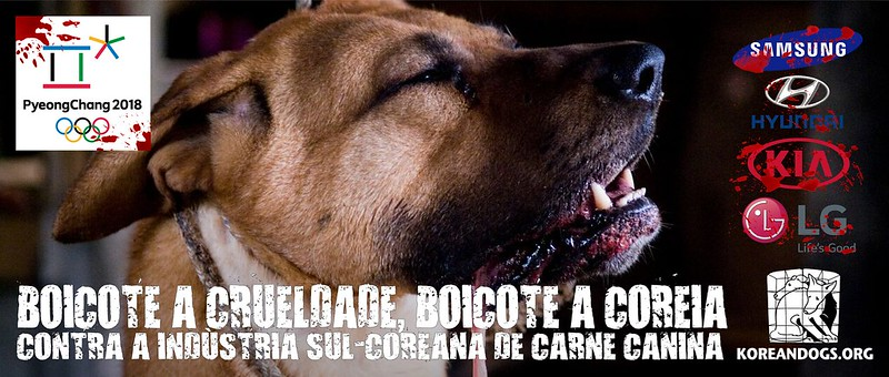 BOICOTE A CRUELDADE, BOICOTE A COREIA (In Portuguese)