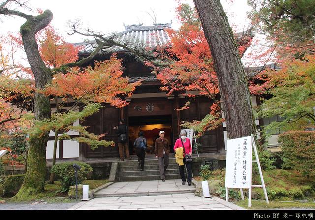 京都-永觀堂056