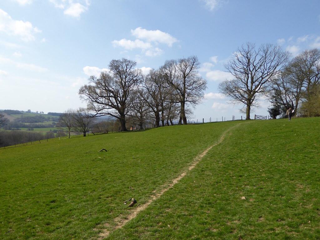 Blue sky Ashurst to Eridge walk