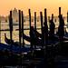 Venice (San Marco) by filippogatteschi