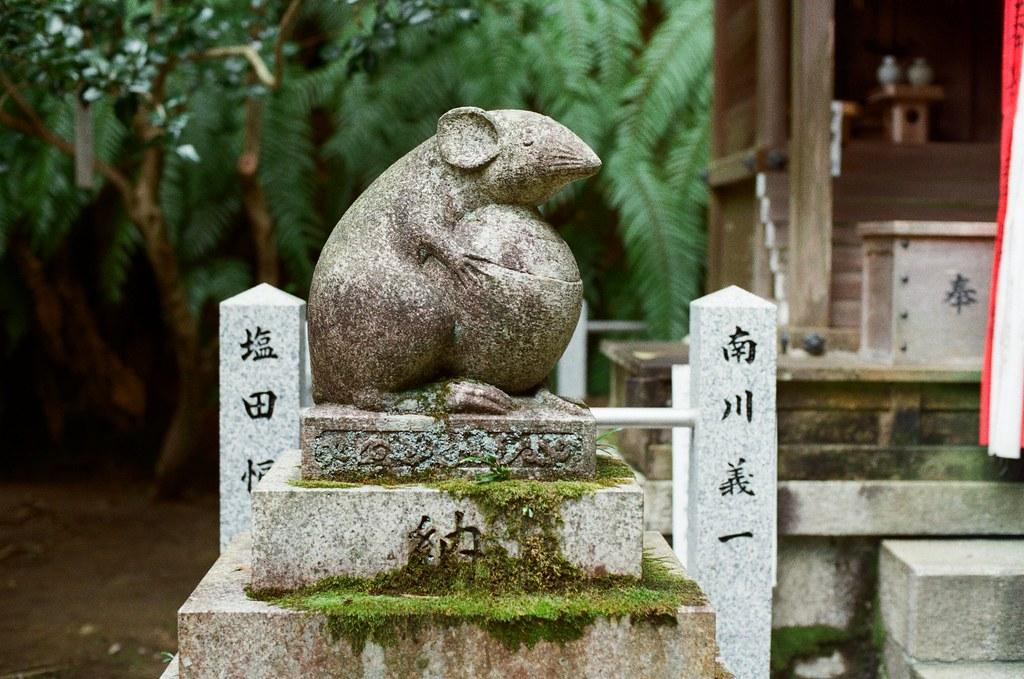 大豐神社 Kyoto / Kodak ColorPlus / Nikon FM2 2015/09/27 三月份的時候有來過一次京都,但是那時候時間很趕,沒有來大豐神社,這裡有兩隻很可愛的老鼠。這次自己在京都待很久,就還是記得要過來這裡拜訪一下。  記得那時候我還是很誠心的許下一樣的願望,後來坐在神社前面的階梯休息一下,這裡很安靜、很舒服。  外面就是銜接哲學之道。  Nikon FM2 Nikon AI Nikkor 50mm f/1.4S Kodak ColorPlus ISO200 0986-0010 Photo by Toomore