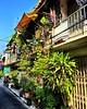 #moobaan life #bangkok