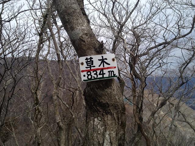 藤原岳 孫太尾根 草木