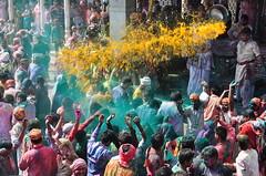 Celebration of Holi 2