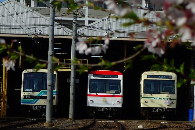 2016/04 叡山電車×ご注文はうさぎですか?? ヘッドマーク車両 #61