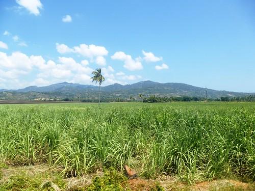 P16-Negros-San Carlos-Dumaguete-Route (34)