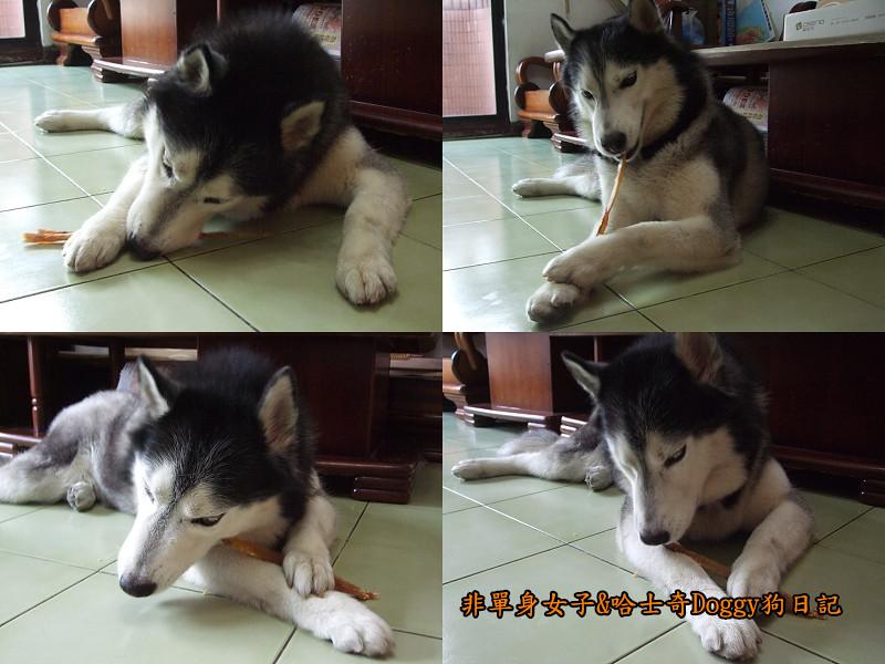 哈士奇Doggy愛狗零食11