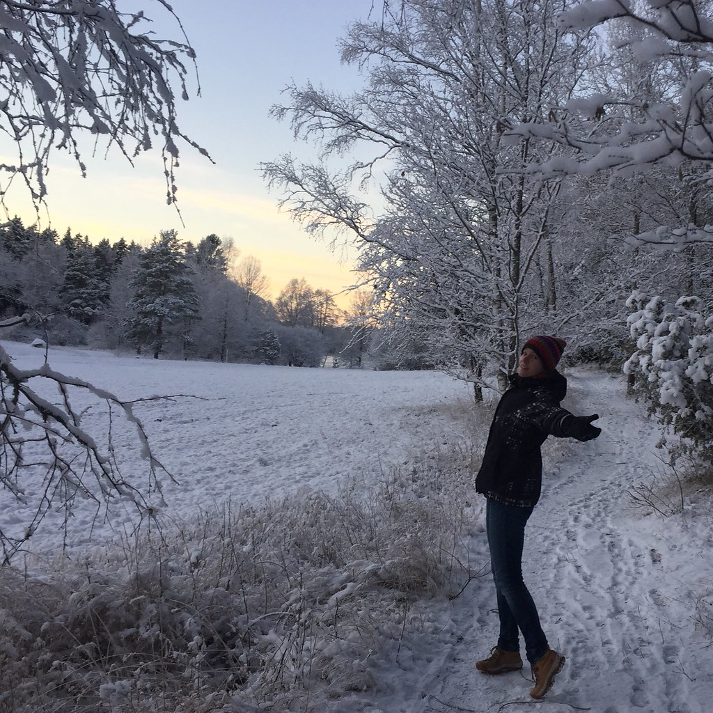 Winter Wonderland alá Stockholm