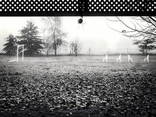 #Chivilcoy #BuenosAires #Argentina #campo #bnw #blancoynegro #casa #home #country  #countryside #mist #blur #neblina
