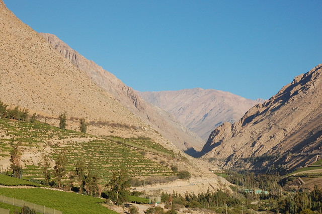 Late Afternoon Views over the Valle de Elqui, Chile