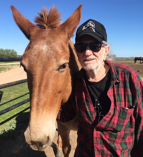 Before the close of the last meeting of the Farm Aid Board of Directors, @willienelsonofficial made a motion to suggest that Willamina (pictured here with Willie) be named the official Farm Aid mascot. According to the minutes of the board meeting, Mr. Ne