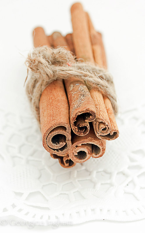 Georgina Ingham | Culinary Travels Photograph Cinnamon Sticks