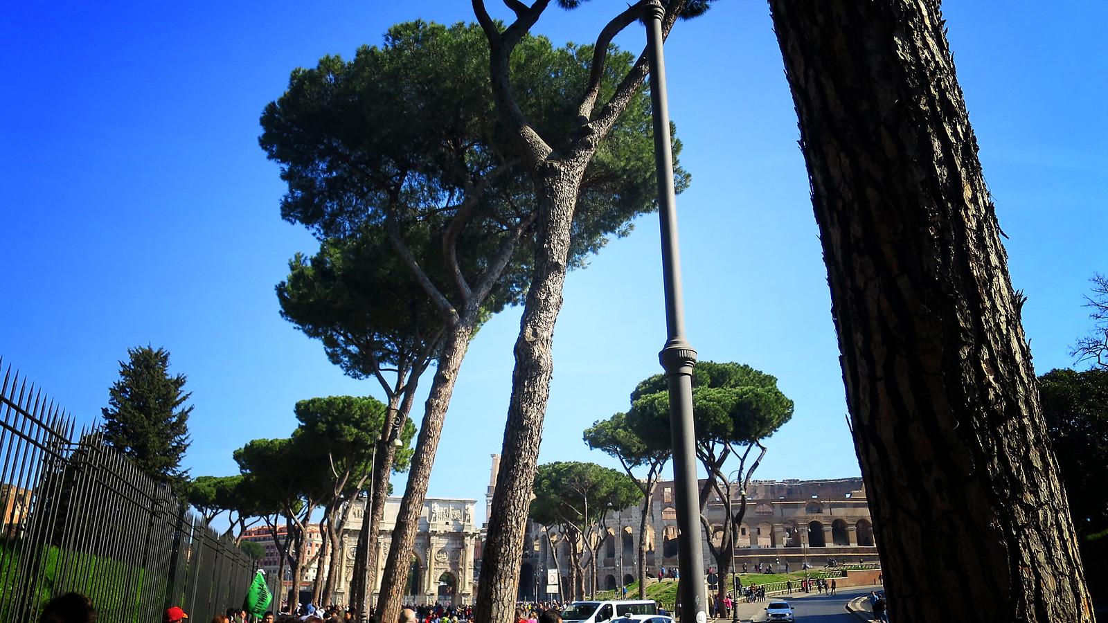 Impero Romano: Foro Romano - Palatino - Colosseo