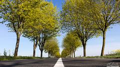 Perspective routière - Etampes - Essonne (2)