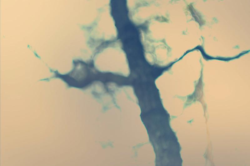 blur-dreamy-texture-texturepalace-12