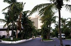 Bahamas 1988 (269) Paradise Island: Casino Drive